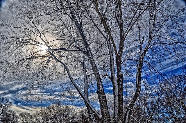 winterdown