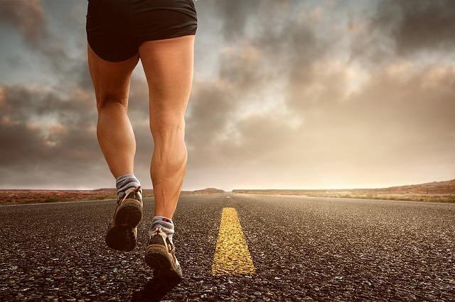 Sports rehab fremont
